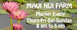 Maui Nui Farm Farmer's Market in Kula